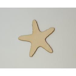 "Dekoracija ""Jūros žvaigdžė"""